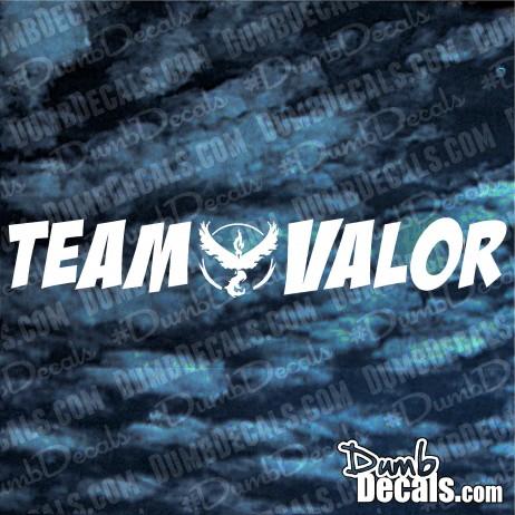 Pokemon Team Valor windshield