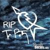 RIP Tom Petty Decal The Heartbreakers vinyl sticker rock legend Heart Breakers